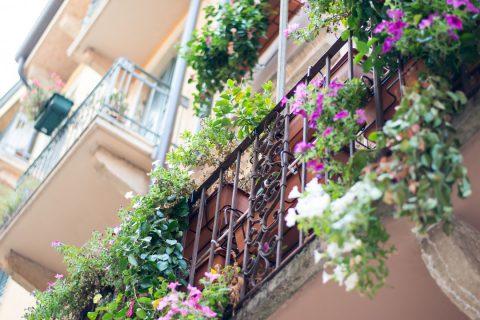 5 conseils pour fleurir son balcon