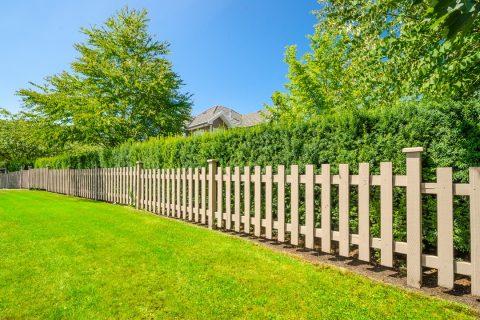 clôture bois verdure